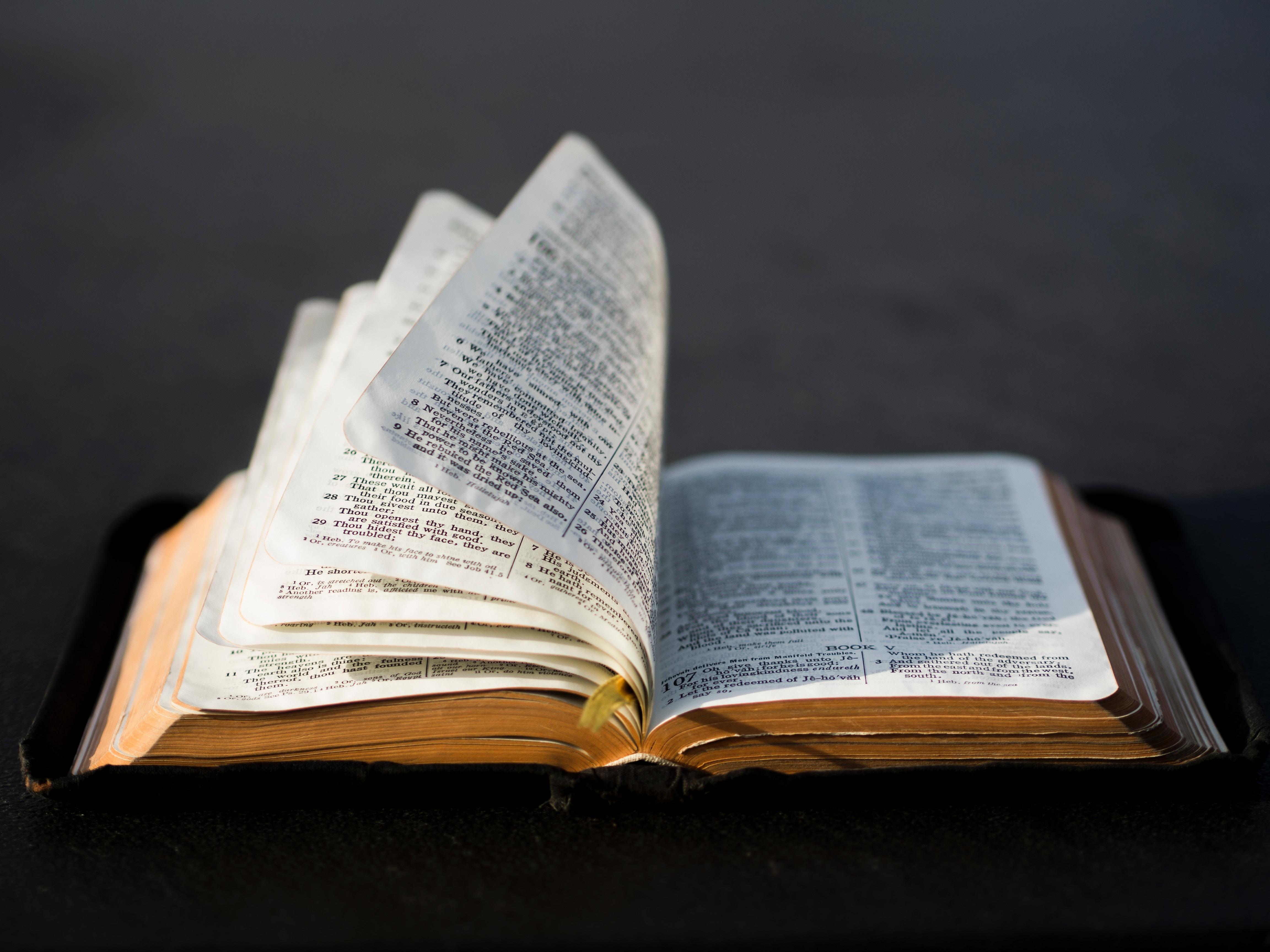 Die Bibel – Gottes Wort